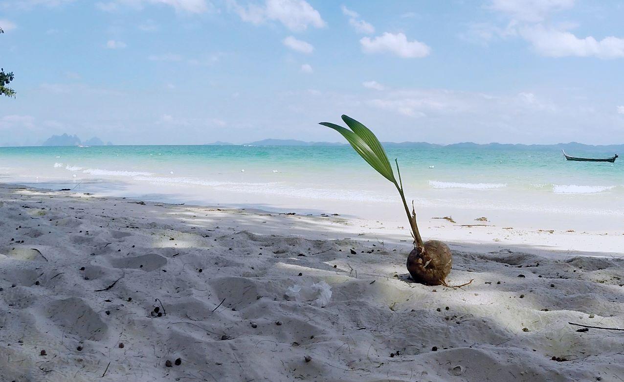 Phuketin Loma-asunnot – Cape Yamu (59)
